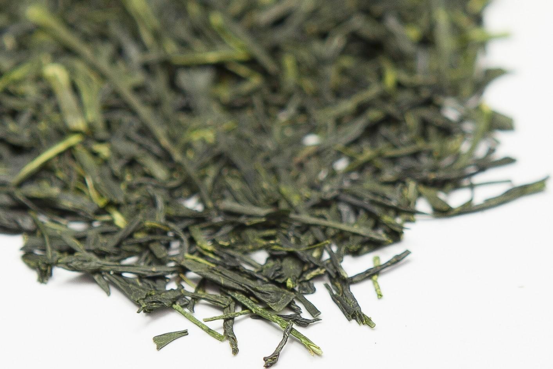 Japanese Sencha Fuji Tea