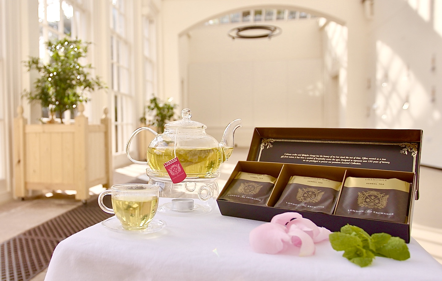Classic Tea Bag Collection