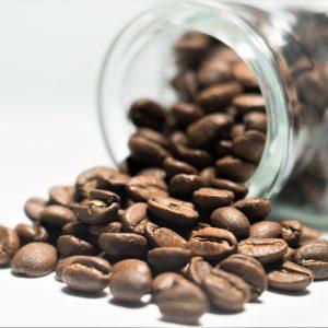 Lampocoy Coffee